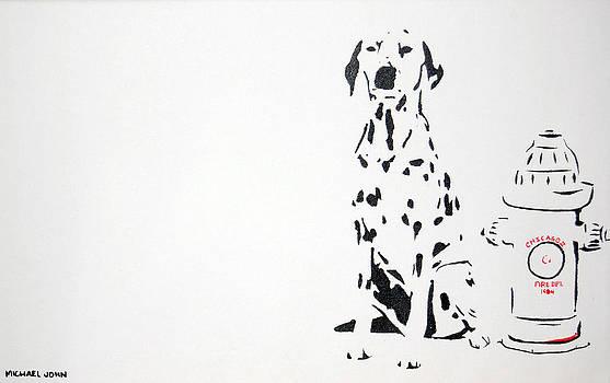 Dalmatian by Michael Ringwalt