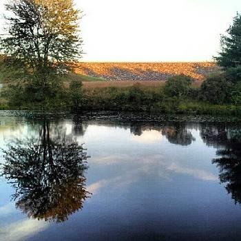 #dam #brook #pond #royalston #ma by Laura Vaillancourt