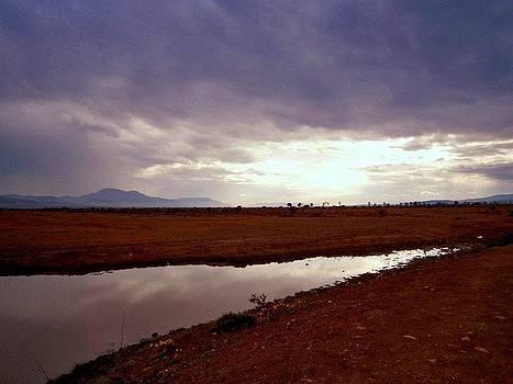 Dam by Tony Yara