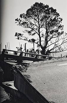 Damaged Bridge by Floyd Smith