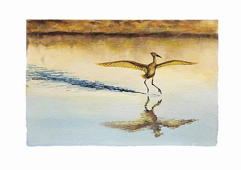 Dancing on Water by Nancy Pahl