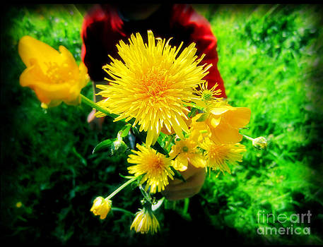 Dandelions and Buttercups by Shana Blake