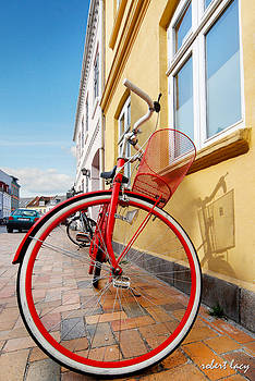 Robert Lacy - Danish Bike