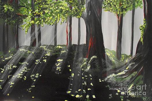 Dappled Forest 1 by Jayne Kerr