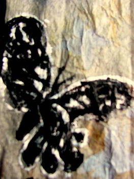 Dark Butterfly with Gray Shadow butterflies by Amy Bradley