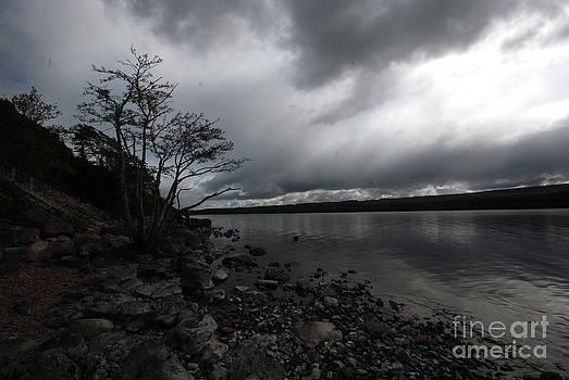 Pravine Chester - Dark Clouds