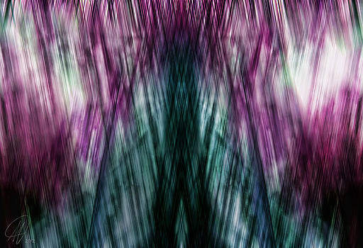 Dark Rain by Margaret Hormann Bfa