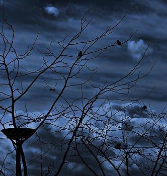 Darkblue by Amr Miqdadi