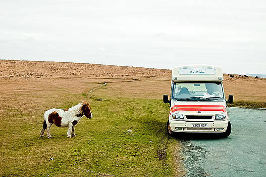 Dartmoor Pony fancies an ice cream by Simon Clare