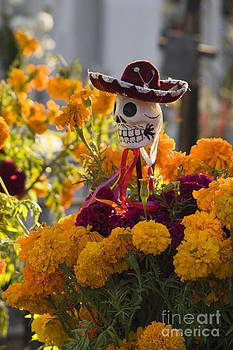 Craig Lovell - Day of the Dead - San Miguel de Allende