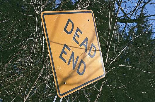 Dead End at an Angle by Sarah Reed