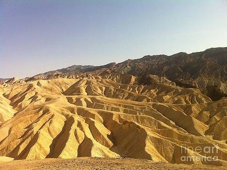 Death Valley National Park by Andy Yoon
