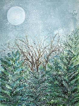 Robin Samiljan - December Full Cold Moon