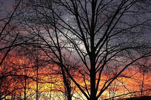 December Sunset by Devon Stewart