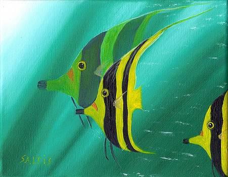 Deep Sea Patterns by Jim Saltis