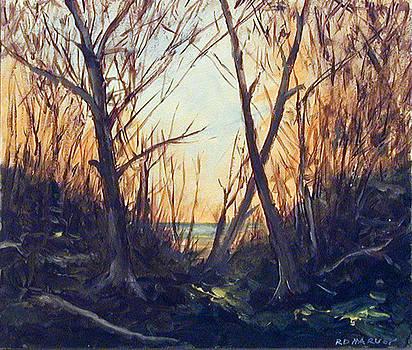 Deep Woods by Robert Harvey