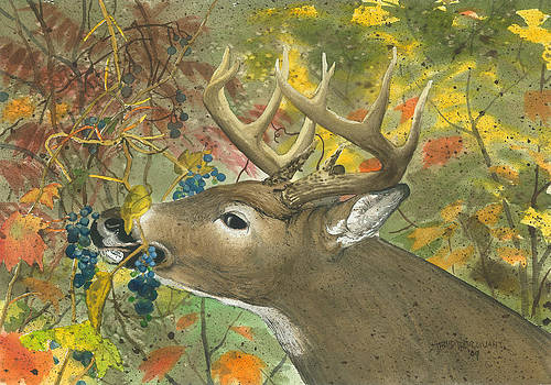 Deer in the Grapes by Bud Bullivant