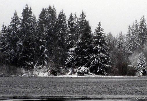 Sandy Rubini - Deer Lake No. 1