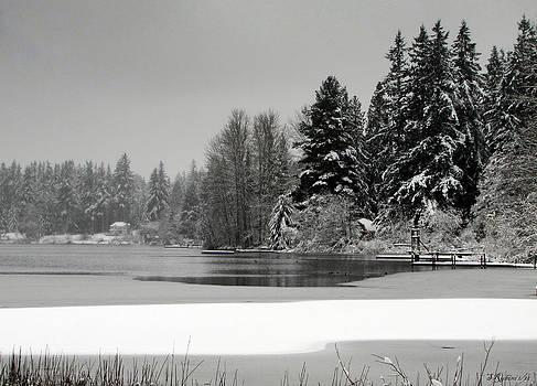 Sandy Rubini - Deer Lake No. 2