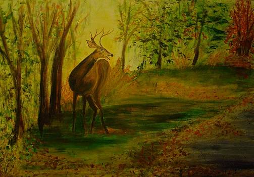 Deer Startled by Carolyn Speer