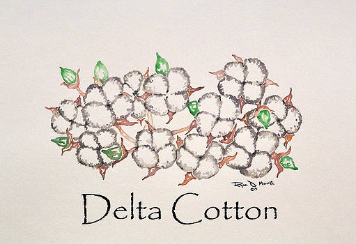 Delta Cotton by Ryan D Merrill