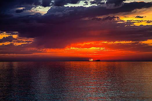 Departing at Dawn by David Wynia