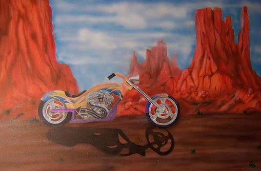 Desert Bike by Phillip Whitehead