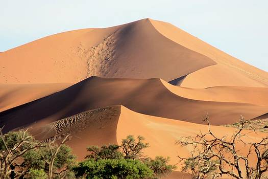 Desert Dunes by Barbara Allm