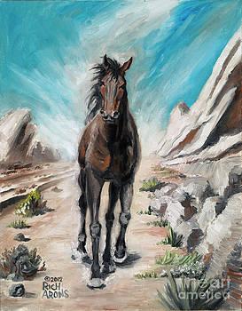Rich Arons - Desert Fury