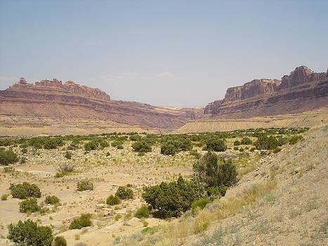 Desert Mesas by Brandon Radford