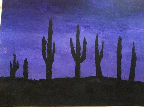 Desert night  by David Stich