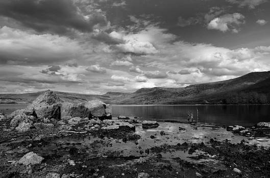 Desert Oasis by Julie Pendleton