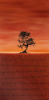 Desert poetry - flame by Lorenzo Spinelli