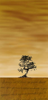 Desert poetry - gold by Lorenzo Spinelli