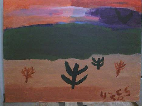 Desert Prarie At Sunset by Cory Smith