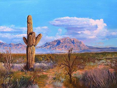 Desert Scene 4 by M Diane Bonaparte