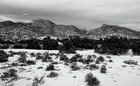 Desert Snow by Atom Crawford