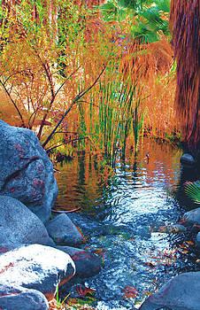 Gilbert Artiaga - Desert Spring, Palm Springs, Ca