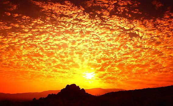 Desert Sunrise by SB Sullivan
