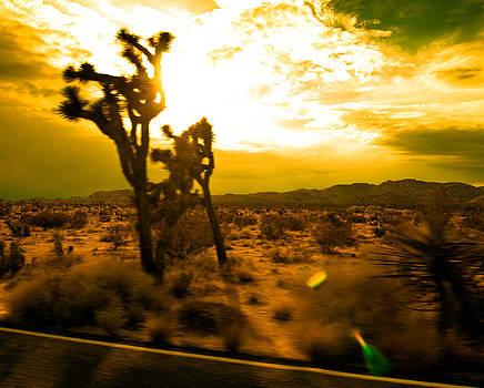 Desert Sunset by Aurica Voss