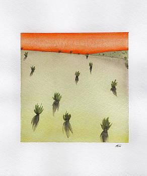 Desert Sunset by Mirii Elizabeth
