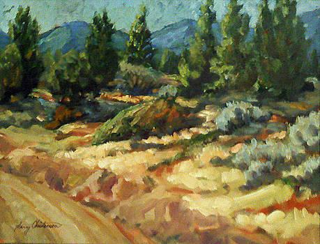 Desert Trails by Larry Christensen