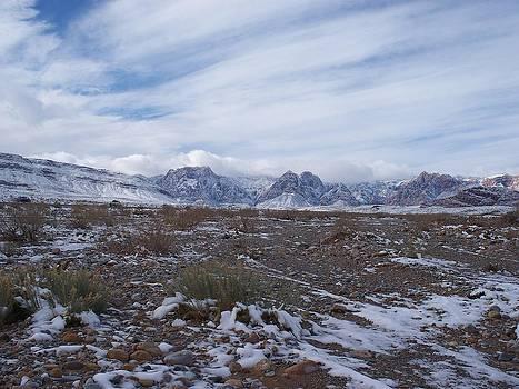 Desert Winter by Jonathan Barnes