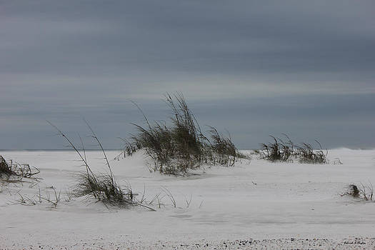 Deborah Hughes - Deserted Beach