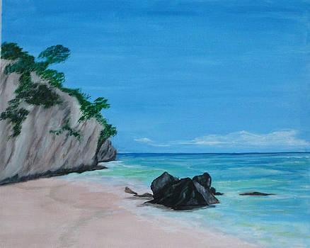 Deserted Beach NZ by Nancy Nuce