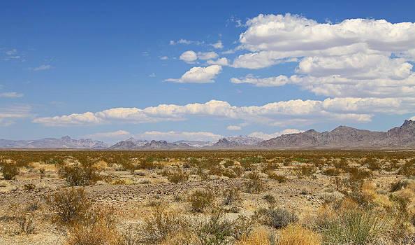 Desertscape by Gary Kaylor