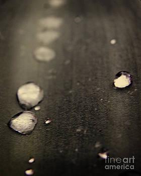 Emily Kelley - Dew Drops