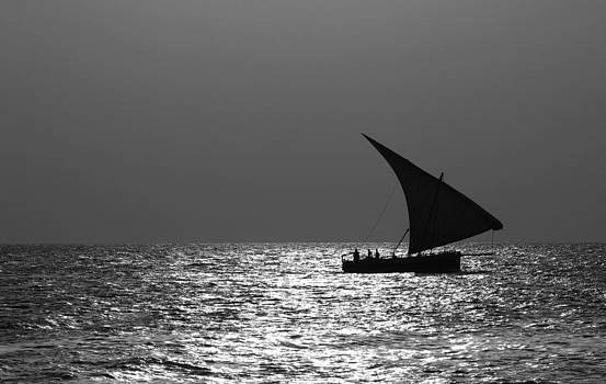 Dhow Coming Home II by Diane Geddes
