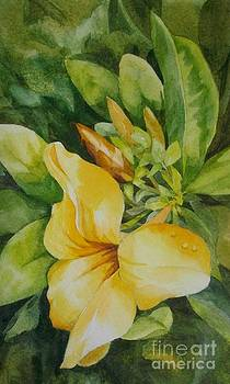 Dianne's Flower by Judith A Smothers