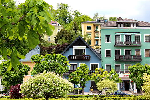 Different Shades of Green by Sonja Bonitto
